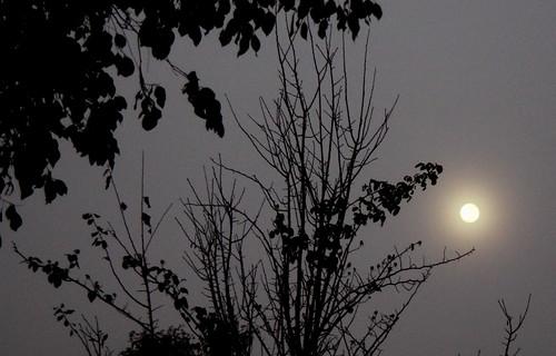 IMG 4510 Full Moon through the Fog