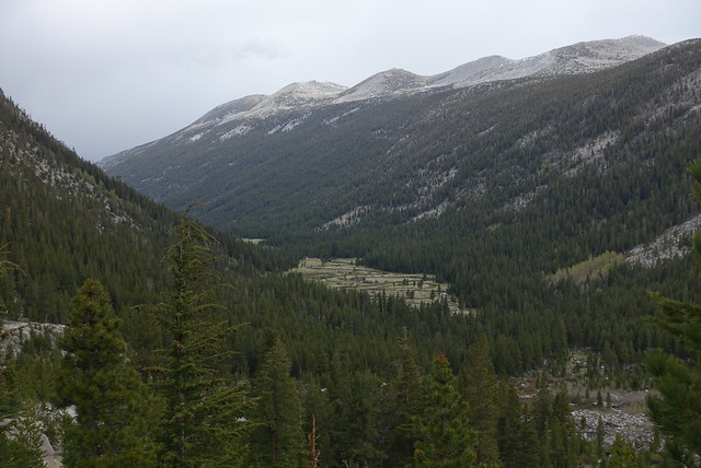 Lyell Canyon view, m930