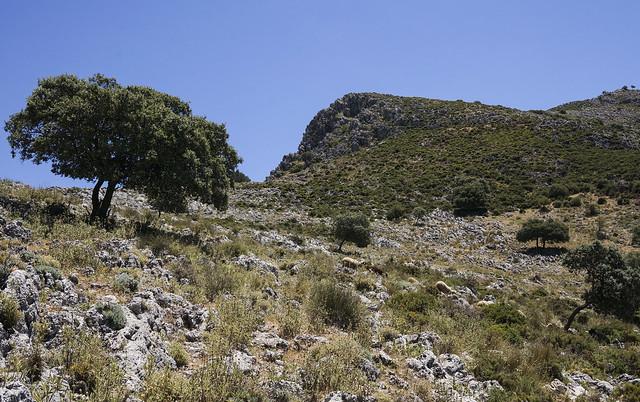 9. Hike