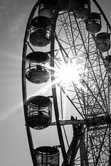 Darling Harbour - Wheel