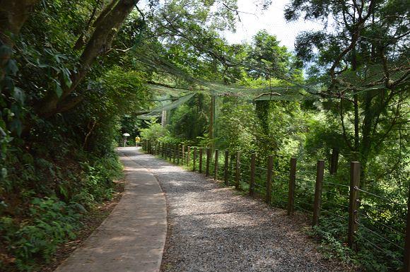 林美石磐步道03