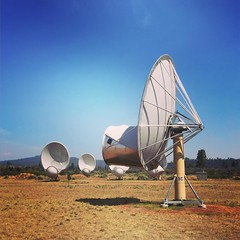 aircraft(0.0), aviation(0.0), wing(0.0), vehicle(0.0), wind(0.0), radio telescope(1.0),