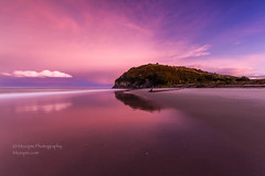 muzzpix-nz posted a photo:Facebook      500px    WebsiteThis is the headland at Bowentown beach at the southern end of Waihi beach . The sky was just going off with pink and this was after some heavy squally showers with hail on the roads . Typical spring stuff ...