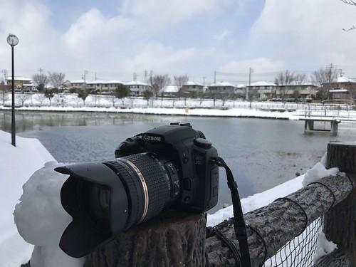 雪景色  濁池公園