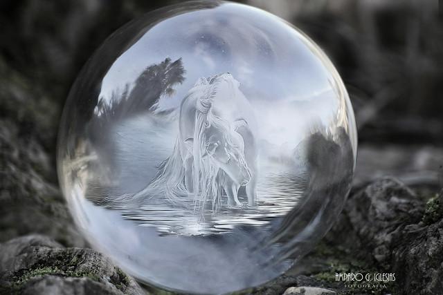 En la burbuja de mi propio sueño - Amparo García Iglesias