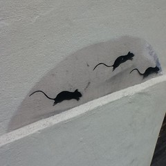 I love that the folks who own this house painted the outside and took care not to paint over the mice.