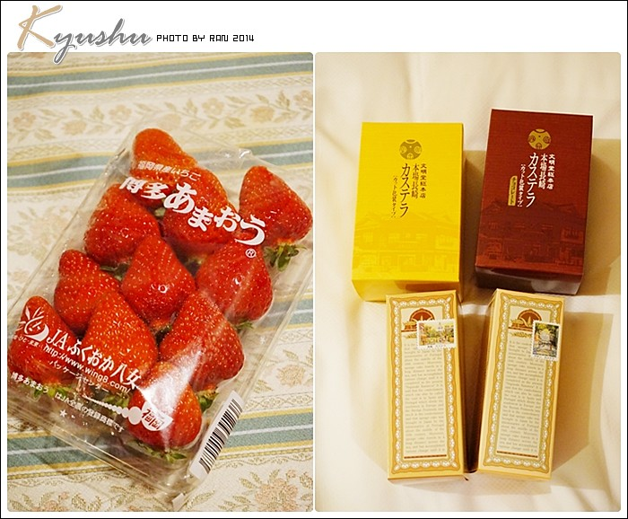kyushu20140326045