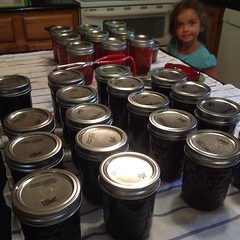 Final count...  29 half #pints of #homemade #jam. Three batches. One #photobomb by my awesome helper. #omnomnom #strawberry #raspberry #blueberry