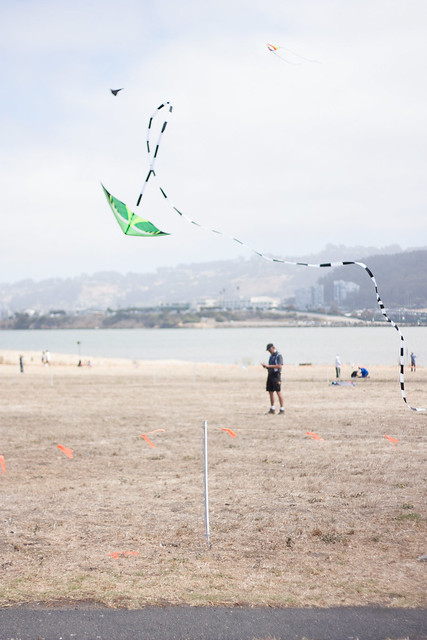 Flying Kite - 2