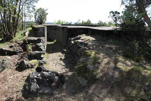 Vardås Nøtterøy (2)
