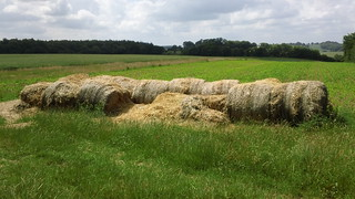 Summer bales
