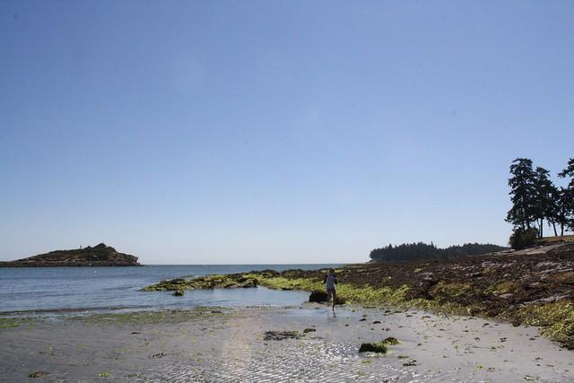 island_summer15