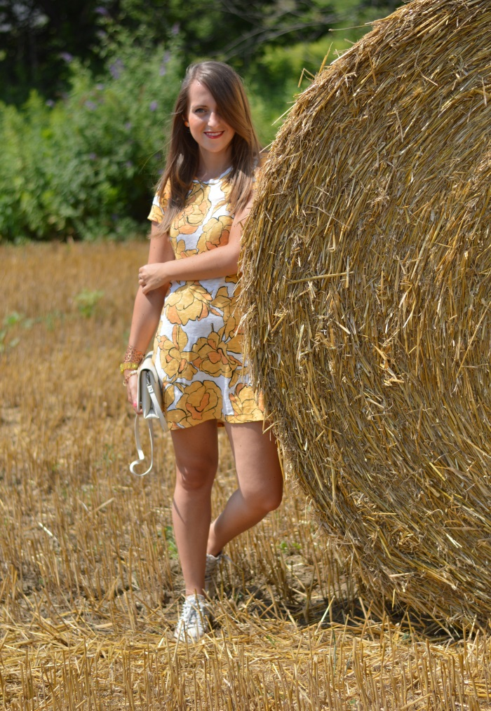 balle di fieno, golden, wildflower girl, Zara, Novara, fashion blog (12)