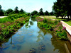 Benton Harbor Ox Creek by FotoGuy 49057