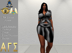 AGS INC. Womens X Top & Skirt With Appliers