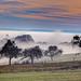 Morgennebel by oblakkurt