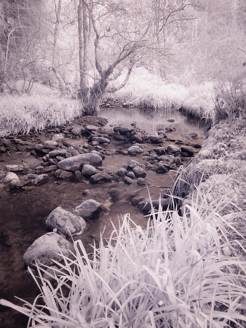 Infra-Red Stream & Rocks 2017, Olympus E-P2, Lumix G Vario 14-45mm F3.5-5.6 Asph. Mega OIS