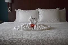 duvet cover, bed frame, textile, furniture, room, bed sheet, bed, pillow,