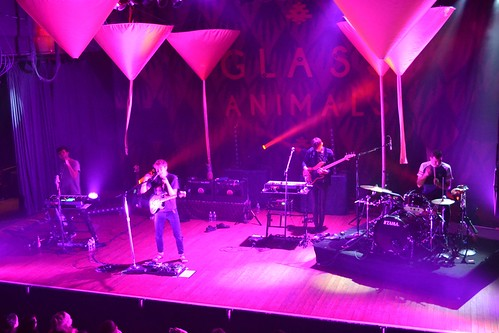 Glass Animals (6/15/15)