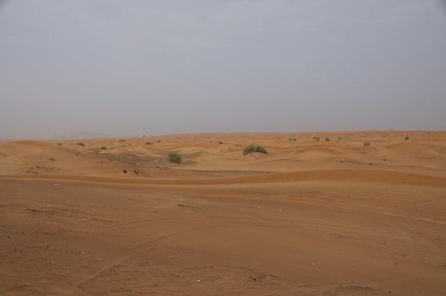 Dubai0004