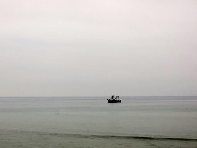 research vessel in the Cove