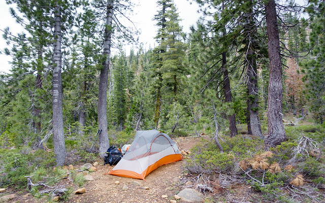 Campsite, July 11 2015