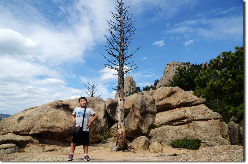 Taken from Lumpy Ridge Trail viewpoint 5