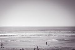 Surf Class UCSD