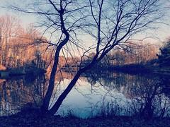 Lake Braddock
