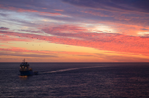 maerskdispatcher maersk sunrise stjohns newfoundlandlabrador