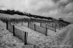 A Row of Sand Fences
