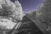 Rock Creek Parkway in Near Infrared