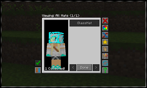 Minecraft Glass Hat