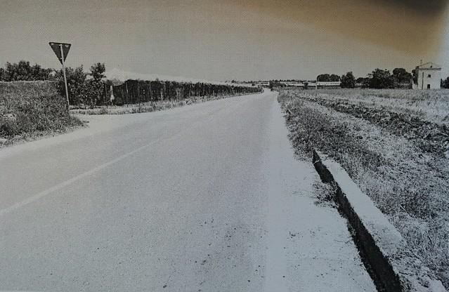 Rutigliano- Il tratto di strada, la SP 122, su cui è avvenuto il ribaltamento