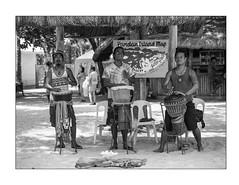 Pandan Island Musicians