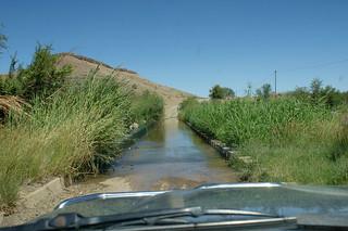 DSC01751 - NAMIBIA 2010  Hardap - Damm