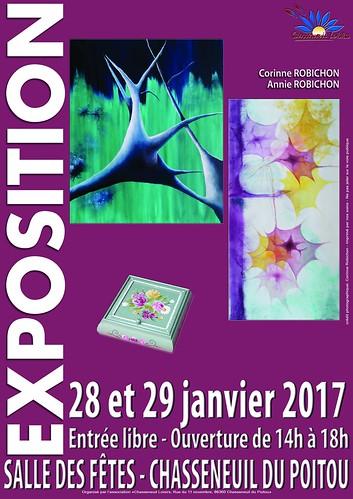 exposition PICTURALE LES 28 ET 29 JANVIER 2017 A CHASSENEUIL-DU-POITOU SITE DU FUTUROSCOPE