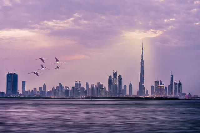 Evening at Dubai Creek Harbour