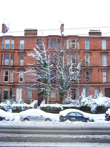 Snowy tree in front of Glasgow Tenement building, Crow Road