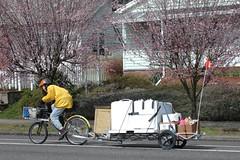 Debbie's Bike Move