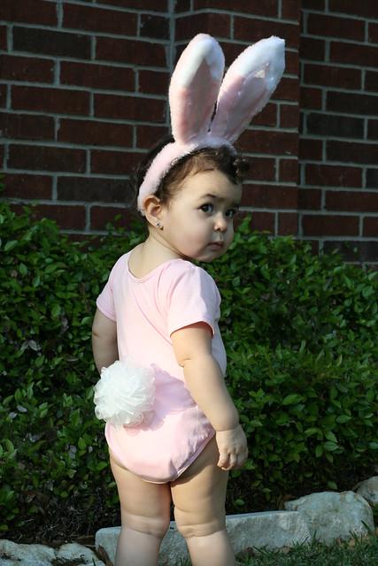 cute bunny bottom - Flickr - Photo Sharing!