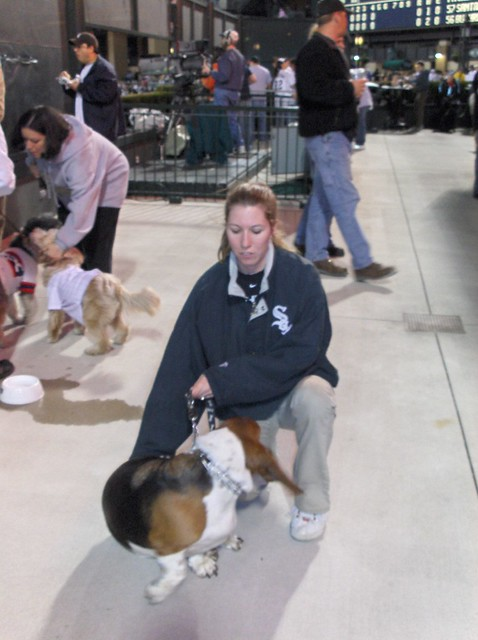 White Sox Dog Day Tickets