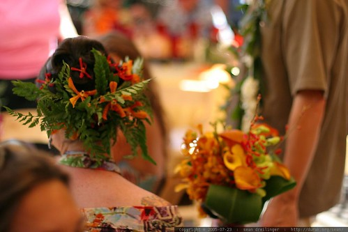 bride - ferns and orchids in her hair, orchid bouquet - IMG_7582.JPG