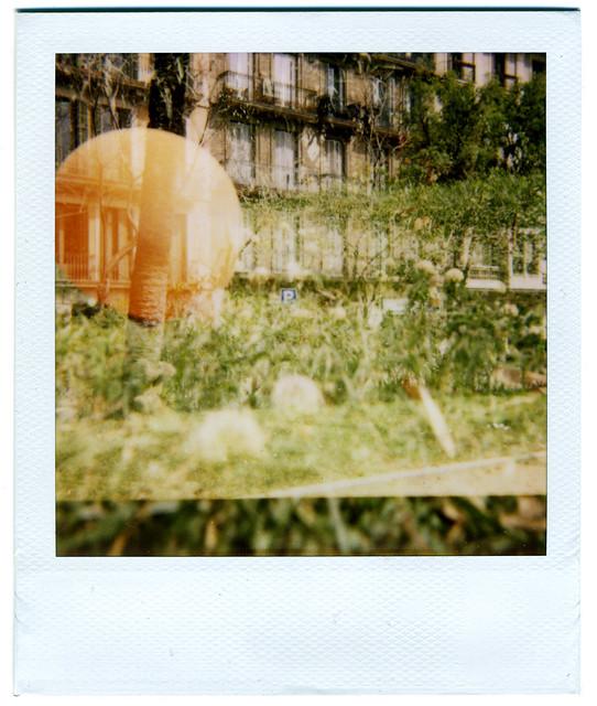 Polaroid Madness 01
