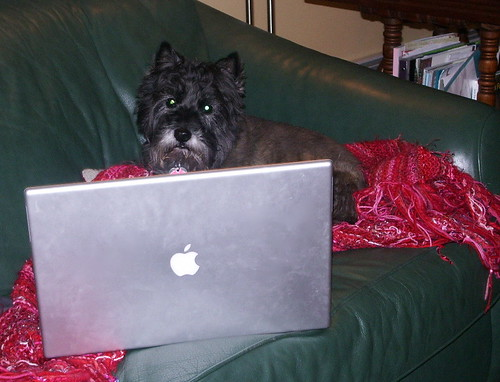 Snickers and Powerbook G4