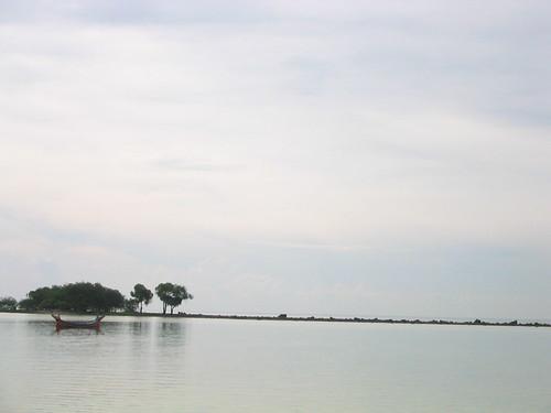 STF 1154.JPG