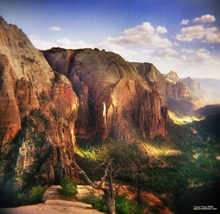 View off Angels Landing
