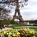 Small photo of Paris au Printemps