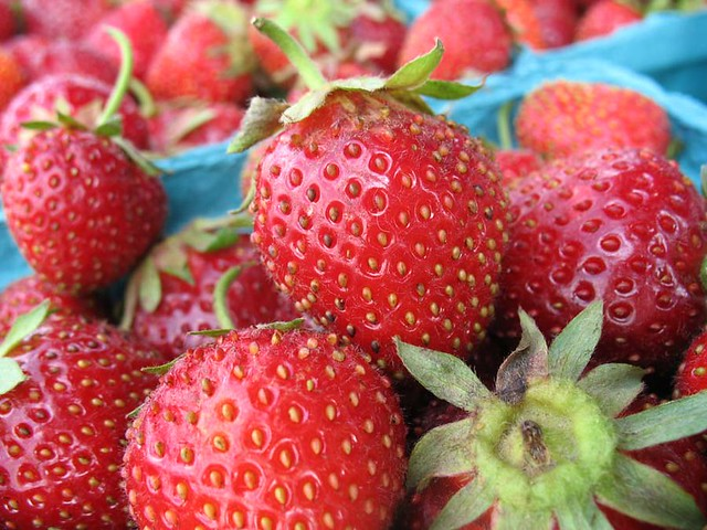 3 Nutritious Summer Fruits to Quench Your Taste Buds on a Hot Day