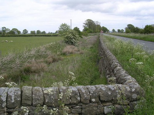 The ditch east of Halton Shields